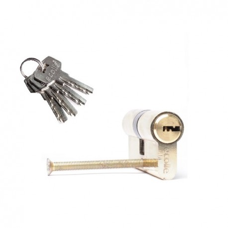 Zylinderschloss 60mm Standardgröße  inkl. 4 Schlüssel - Türzylinder Schließzylinder Türschloss 30+30