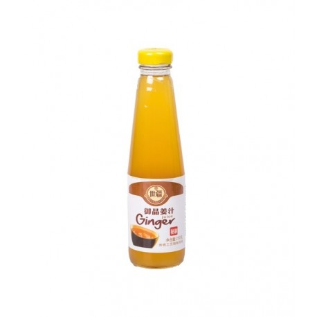 Ingwer Sirup 250ml Ginger syrup für Tee Limonade Ale shoots Konzentrat mit Zucker